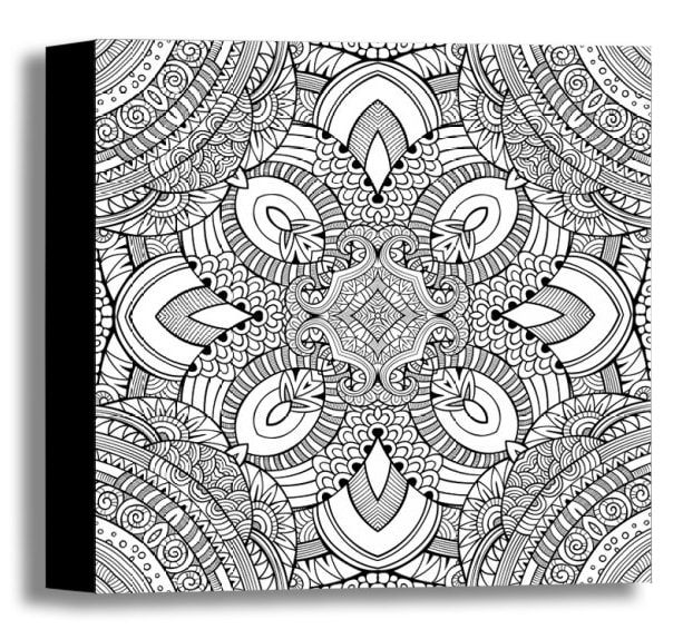 Color Your Own Canvas-Feathers 16x16