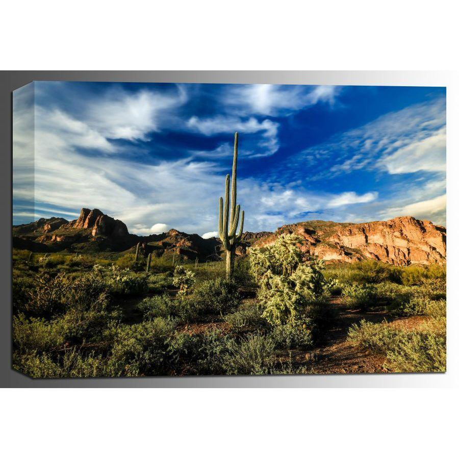 Picture of The Sonoran Sentinel 24x36 *D