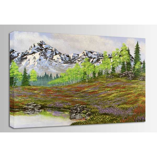 Picture of Mountain Meadow 48x32 *D
