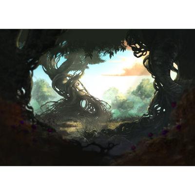 Fantasy Forest 24x16