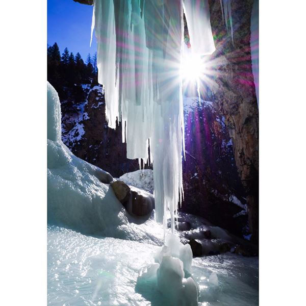 Winter Jewel 24x16