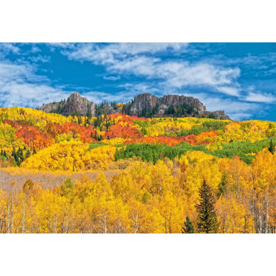 Autumn Colors At Kebler Pass