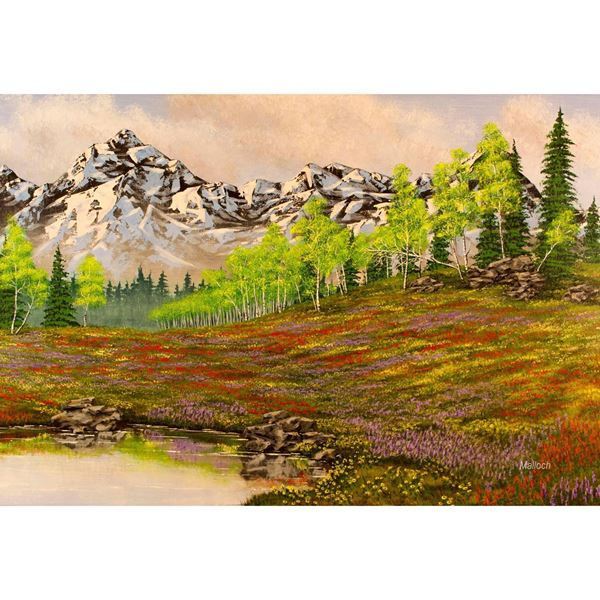 Mountain Meadow 48x32