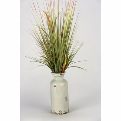 Picture of Onion Grass In White Ceramic Vase