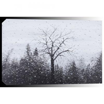 Picture of Mystic Rain 32x48 *D