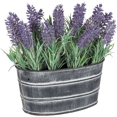 Picture of Lavender in Metal Pot