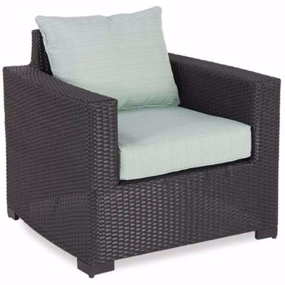 Picture of Brevard Chair with Cushion