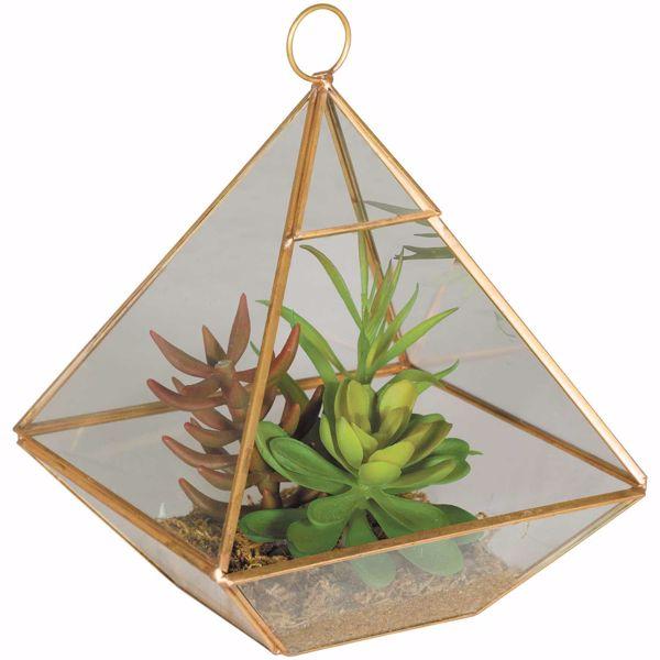 Picture of Succulent Terrarium