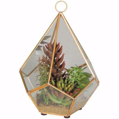 Picture of Gold Terrarium with Succulents