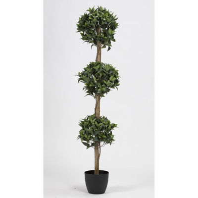 Picture of Bay Leaf 3 Tier Topiary Tree