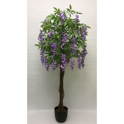 Picture of Lavender Wisteria Tree