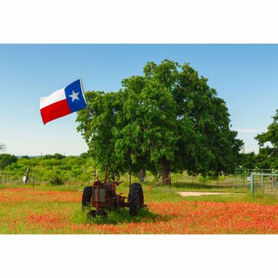 Picture of Old Texas Tractor 32x48