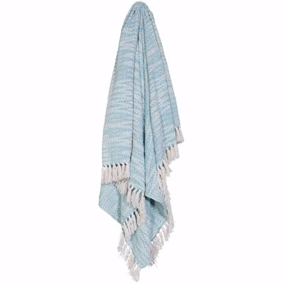 Picture of 50x60 Light Blue Throw