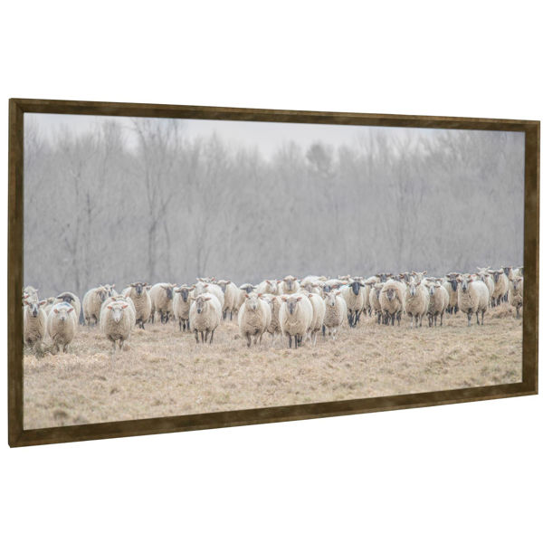 Picture of Sheep in Pasture Framed Wall Decor