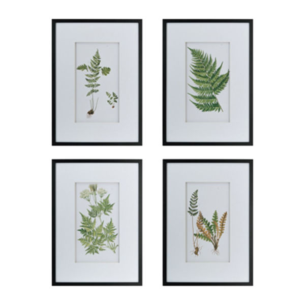 Picture of Set of 4 Fern Wall Decor