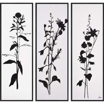 Picture of Set of 3 Botanicals Canvas Art