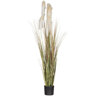Picture of 6 Foot Bulrush In Black Pot