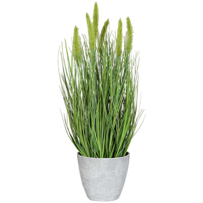 Picture of Foxtail in Melamine Pot