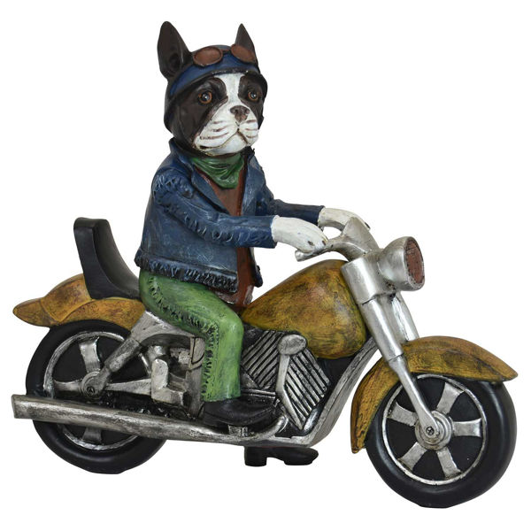 Picture of Dog Riding Motorcycle