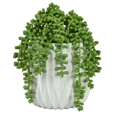 Picture of FAUX SUCCULENTS IN WHITE POT