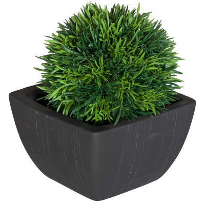 Picture of Grass Ball In Black Terra Pot