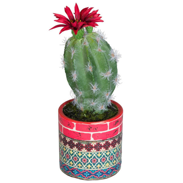Picture of Cactus In Patterned Vase