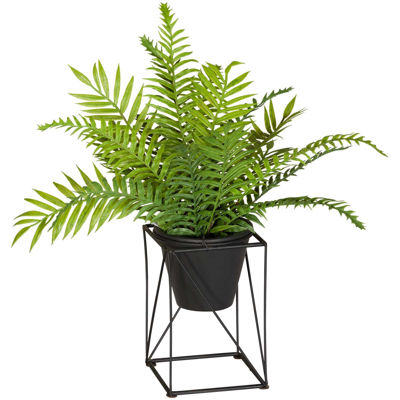 Picture of Ferns On Metal Stand