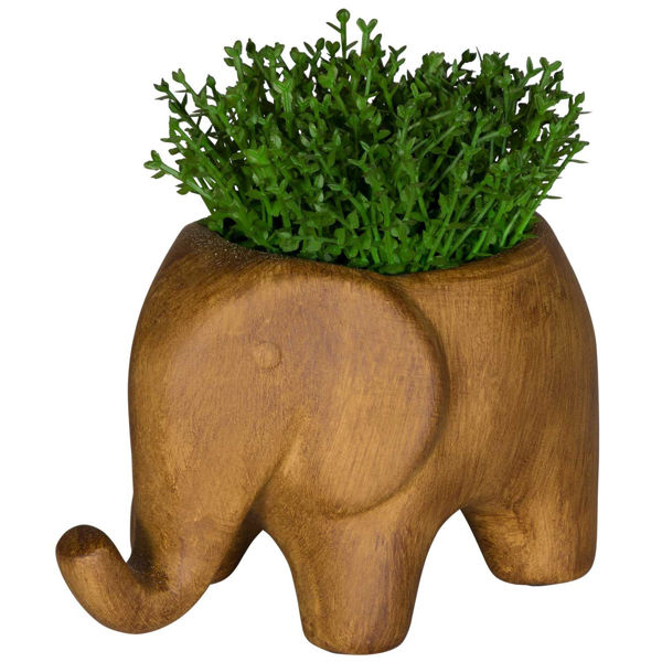 Picture of Grass In Elephant Vase
