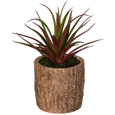 Picture of Grass In Bark Container