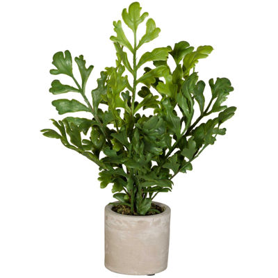 Picture of Split Leaf In Ivory Container