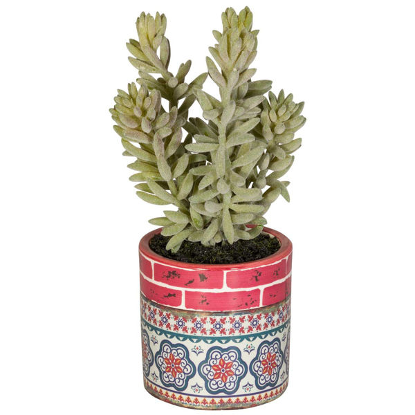 Picture of Succulent In Patterned Vase