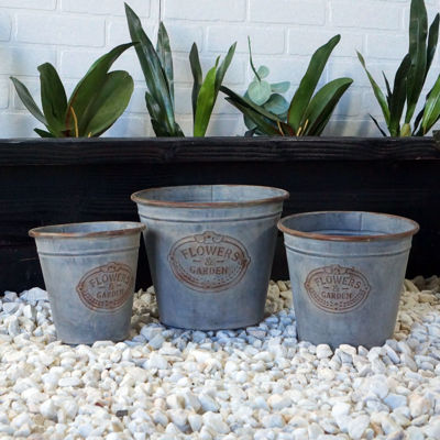 Picture of Set of 3 Metal Galvanized Buckets
