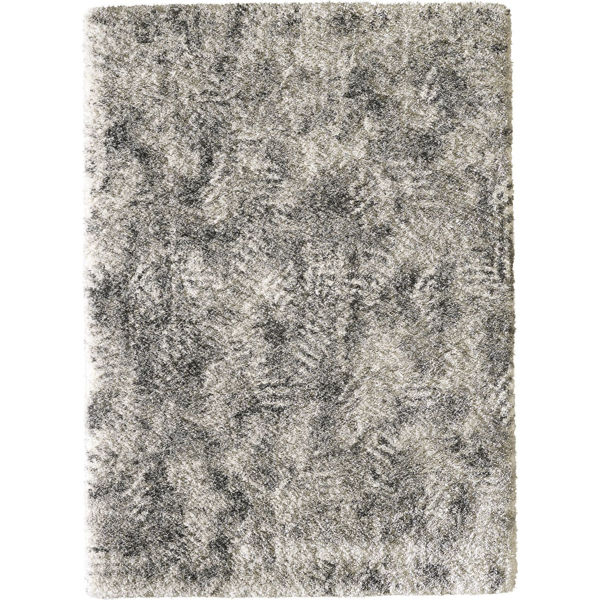 Picture of Ozella Neutrals 5x7 Rug