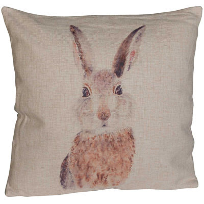Picture of Peter Cotton Tail 18x18 Pillow *P