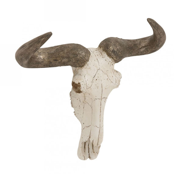 Picture of Steer Skull Wall Decor