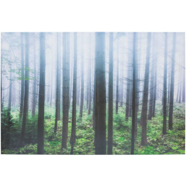 Picture of Misty Pines