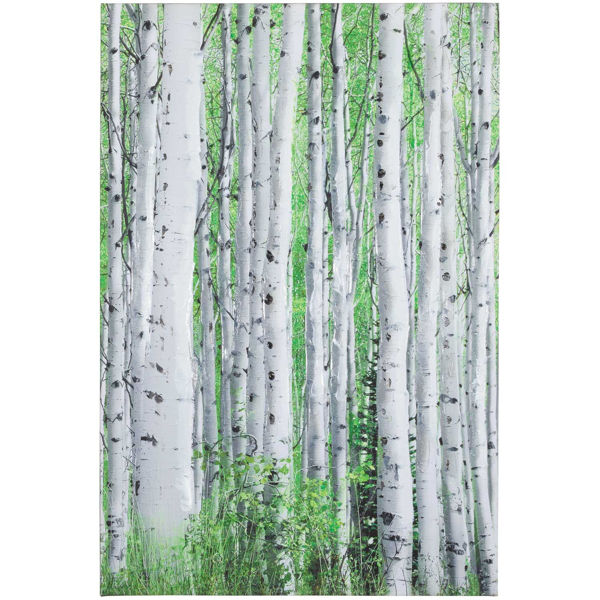 Picture of Early Autumn Aspens I Canvas
