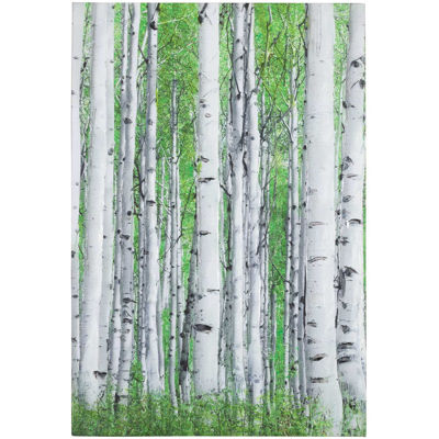 Picture of Early Autumn Aspens III Canvas