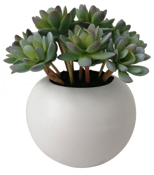 Picture of Faux Succulent In White Pot
