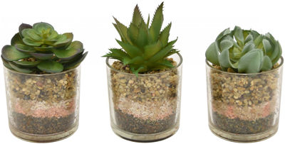 Picture of Faux Succulent Green W/Pot 3 Assorted