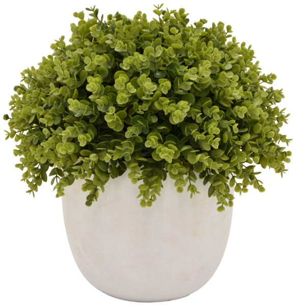 Picture of Faux Greenery In White Pot