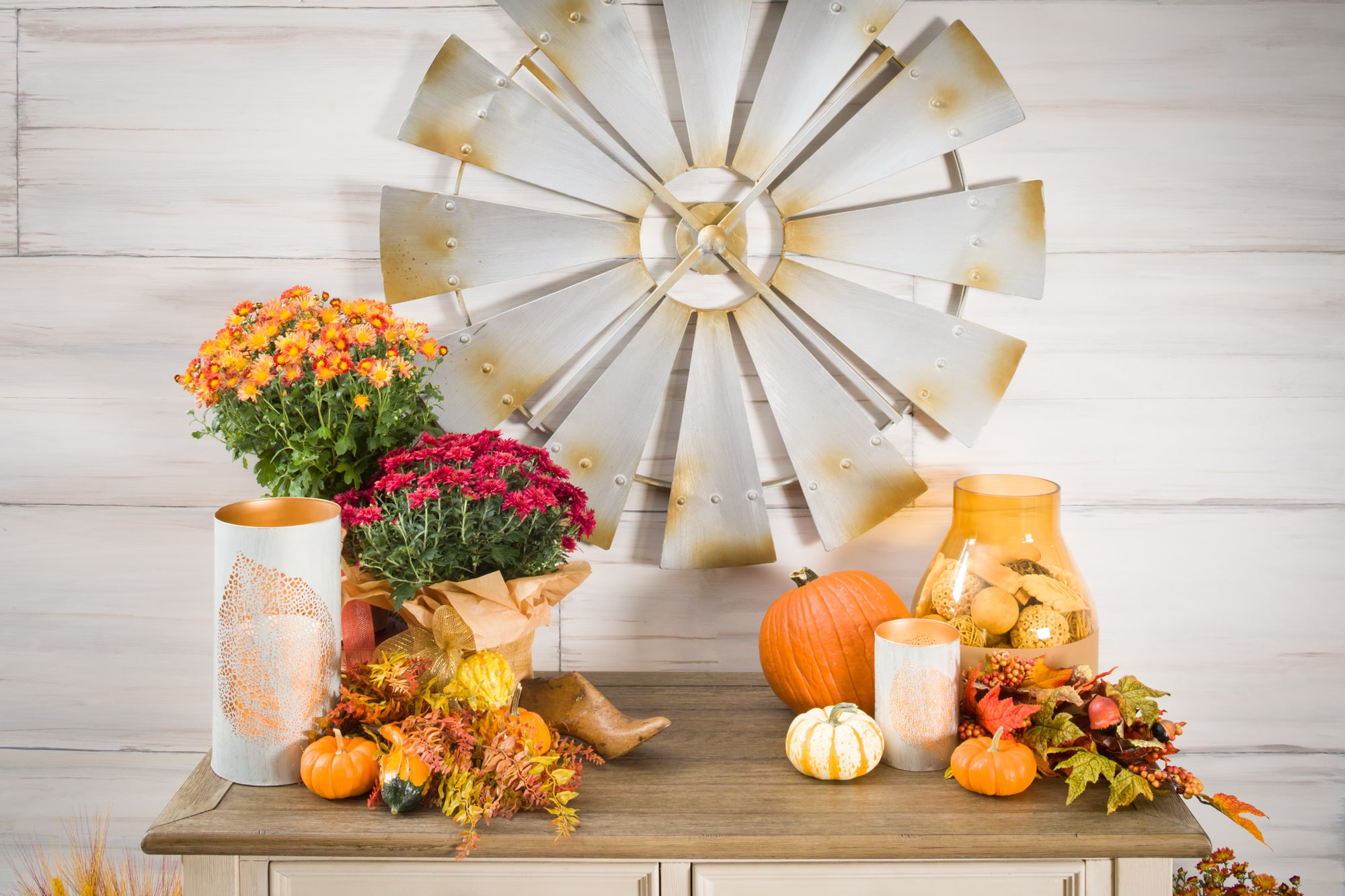 Seasonal flowers and pumpkins